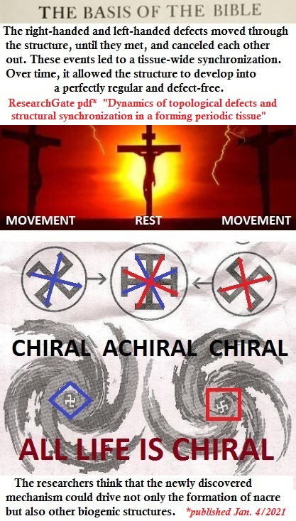 Christ crucified ALL LIFE IS CHIRAL and ACHIRAL basis of bible MOTHER of PEARL with source of quote Superposition
