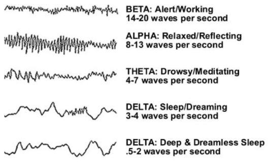Beta Alpha Theta Delta