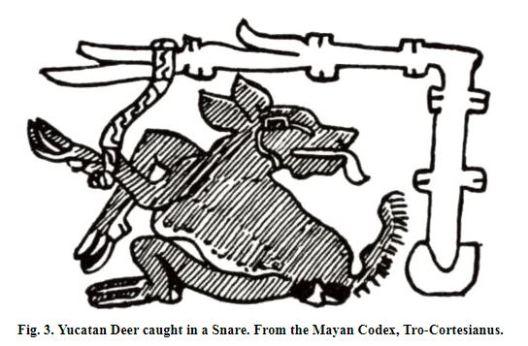 Ligo 'L' idea Ancient Civilizations of Mexico and Central America by Herbert Joseph Spinden 4x3 grid