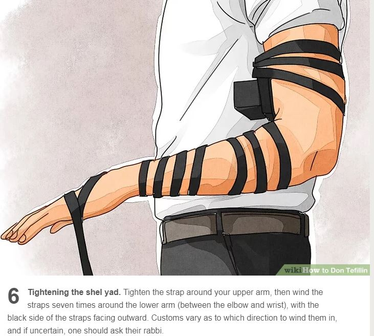 tefillin wind 7 times around lower arm between elbow and wrist DIRECTION varies